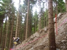Willingen World Cup 2005